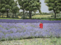 Watercolour/gouache painting of child chasing butterfly through Lavender Fields by London artist, Tracie Wayling