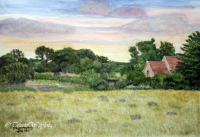 Watercolour/gouache painting of Lavender Fields and distant church by London artist, Tracie Wayling