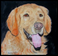 Pet portrait example, watercolour painting by London artist, Tracie Wayling